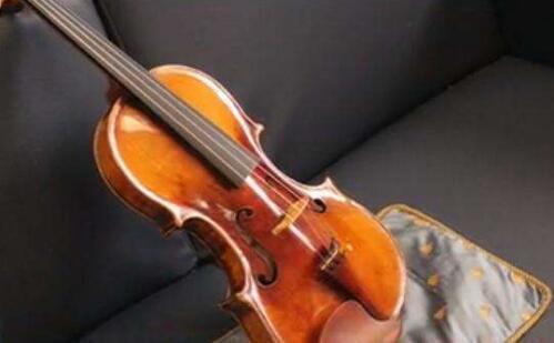 高德平台注册地址为防止小提琴因极端天气损坏 美国教授和儿子搂着它睡觉